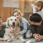 Importance of Pets