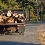 Importance of Deforestation